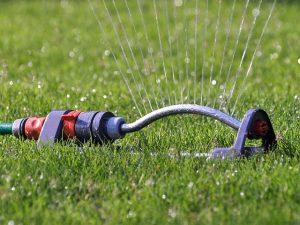 saving water at home - sprinkler