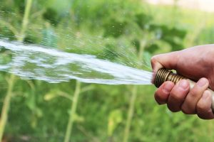 saving water at home - hose